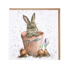 'The Flower Pot' card