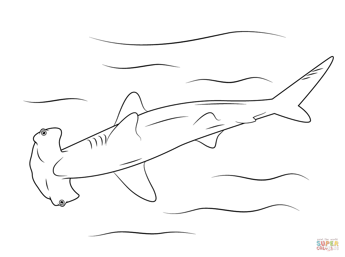 Hammerhead Shark coloring page from Hammerhead shark category ...