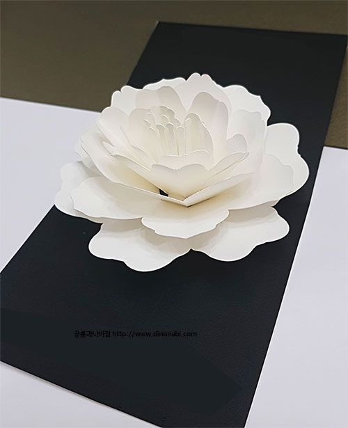 Flower Pop Up Card Pop Up Card Templates Diy Pop Up Cards Pop Up Flower Cards