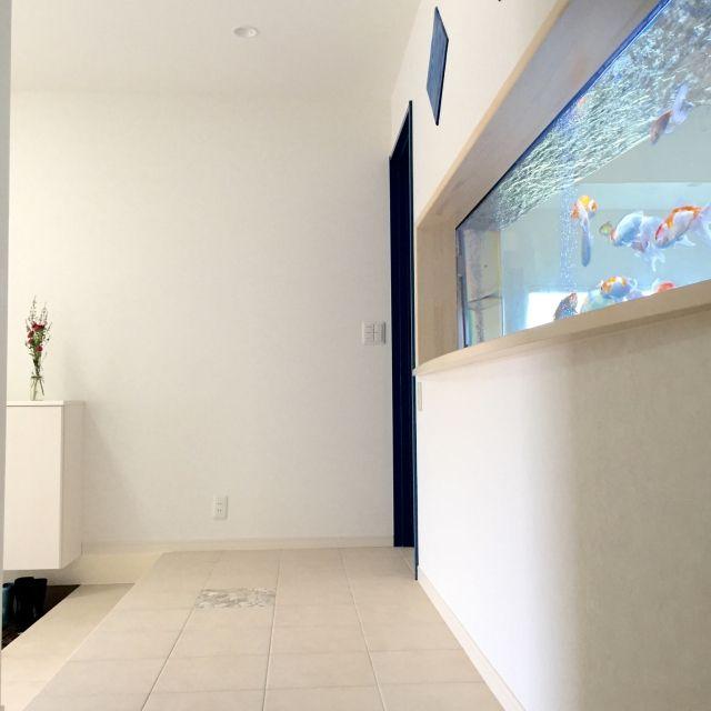 玄関 入り口 水槽 サーモタイル リクシル タイルの床 などのインテリア実例 2016 09 01 18 09 18 Roomclip ルームクリップ 自宅で インテリア 玄関
