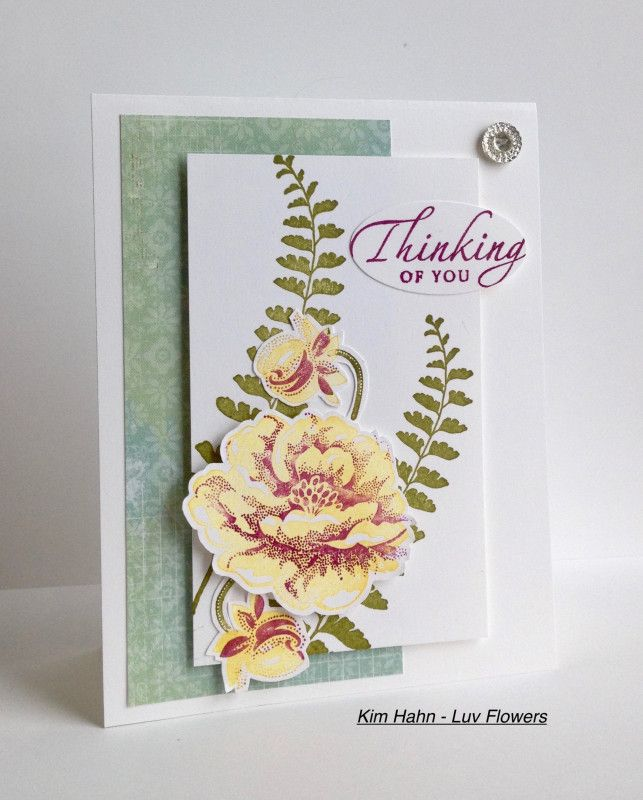 CC669 Guest Designer Sample- Kim\u0027s card Tuesday Color Challenge - Sample Cards