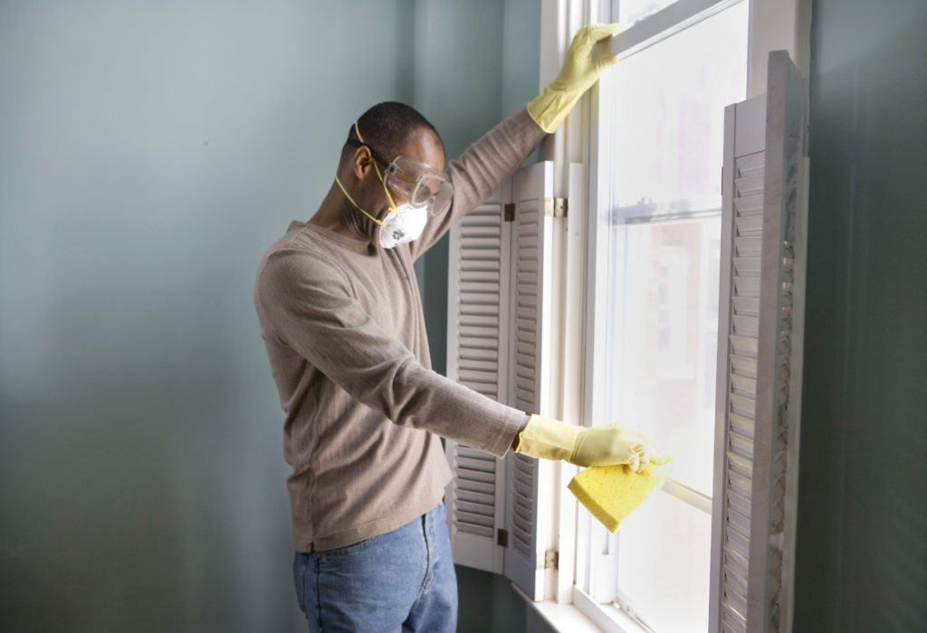 Home improvement news a guide to basement mold removal