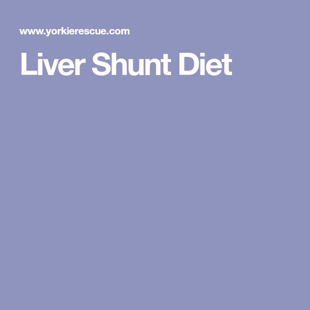 liver shunt diet for cats