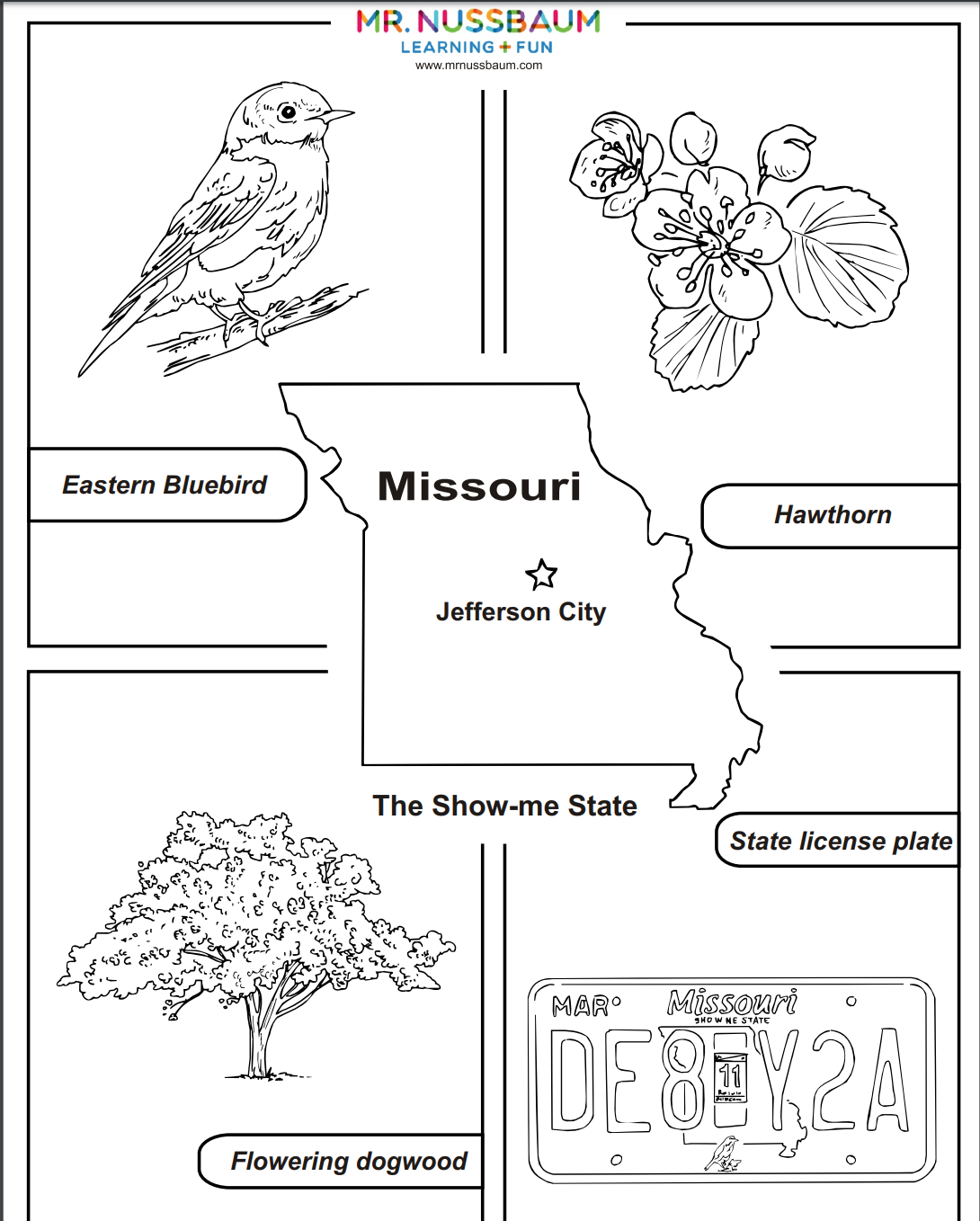This Awesome Coloring Activities Allows Students To Design Missouri S State Bird Flower Tree And Licen State Symbols Missouri State State Symbols Activities