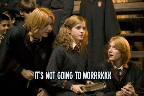 My Reaction When I Find Out The Girl I Likes Isn T An Hp Fan Weasley Twins Harry Potter Goblet Harry Potter Tumblr