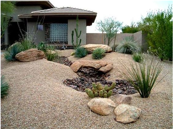 This One Is Our Favorite Like The Mounds Stone Pond Color Scheme Also Really L Arizona Backyard Landscaping Desert Backyard Backyard Landscaping Designs