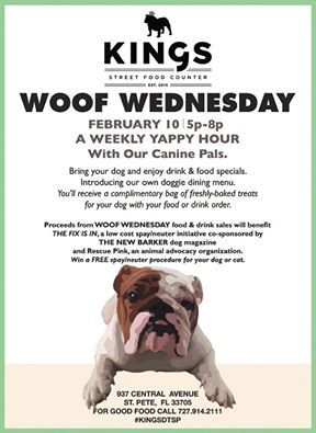 February Is National Spay Neuter Month Do You Know Someone Who