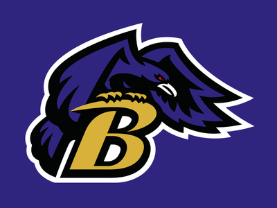 Baltimore Ravens by Fraser Davidson