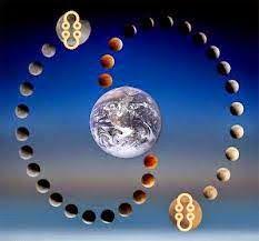 milan sasic astrolog kontakt