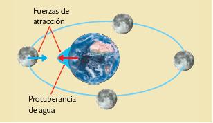 La misma fuerza gravitatoria responsable de crear mareas en la ...
