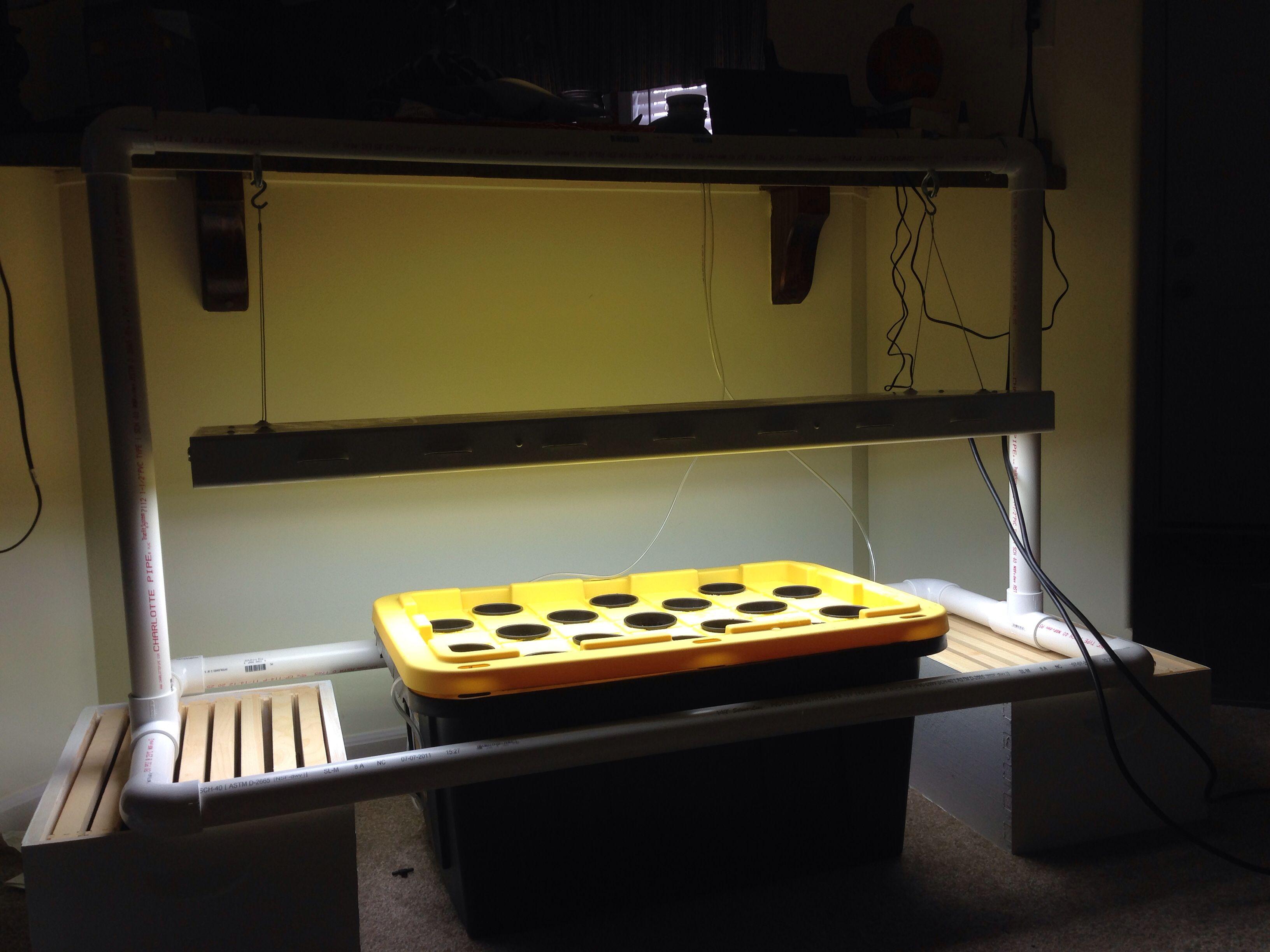 My Hydroponic Setup 27 Gallon Tote Lowes 30 60 Gallon