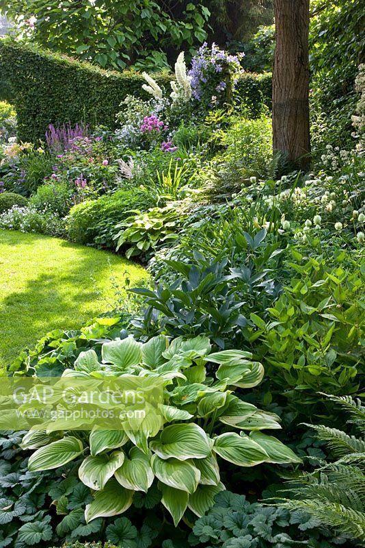 Lovable granted beautiful backyard gardening call to action ideas #shadeperennials