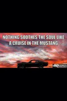 Pin By America M F On Mustang Mustang Quotes Mustang Humor