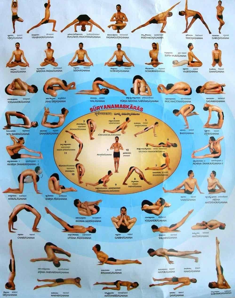 Yoga Poses Pdf Hindi Health Fzl99 Yes