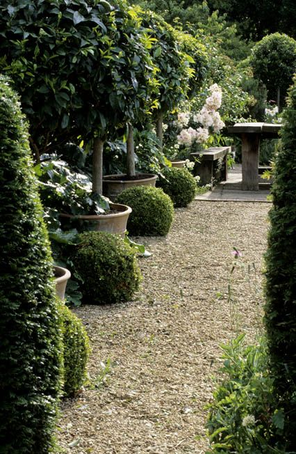 Bunny Guiness Garden Design Potted Trees And Boxwood. Gravel Path. White  Flowers, Bench