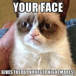your face gives freddy krueger nightmares! | Grumpy Cat Face | Meme Generator