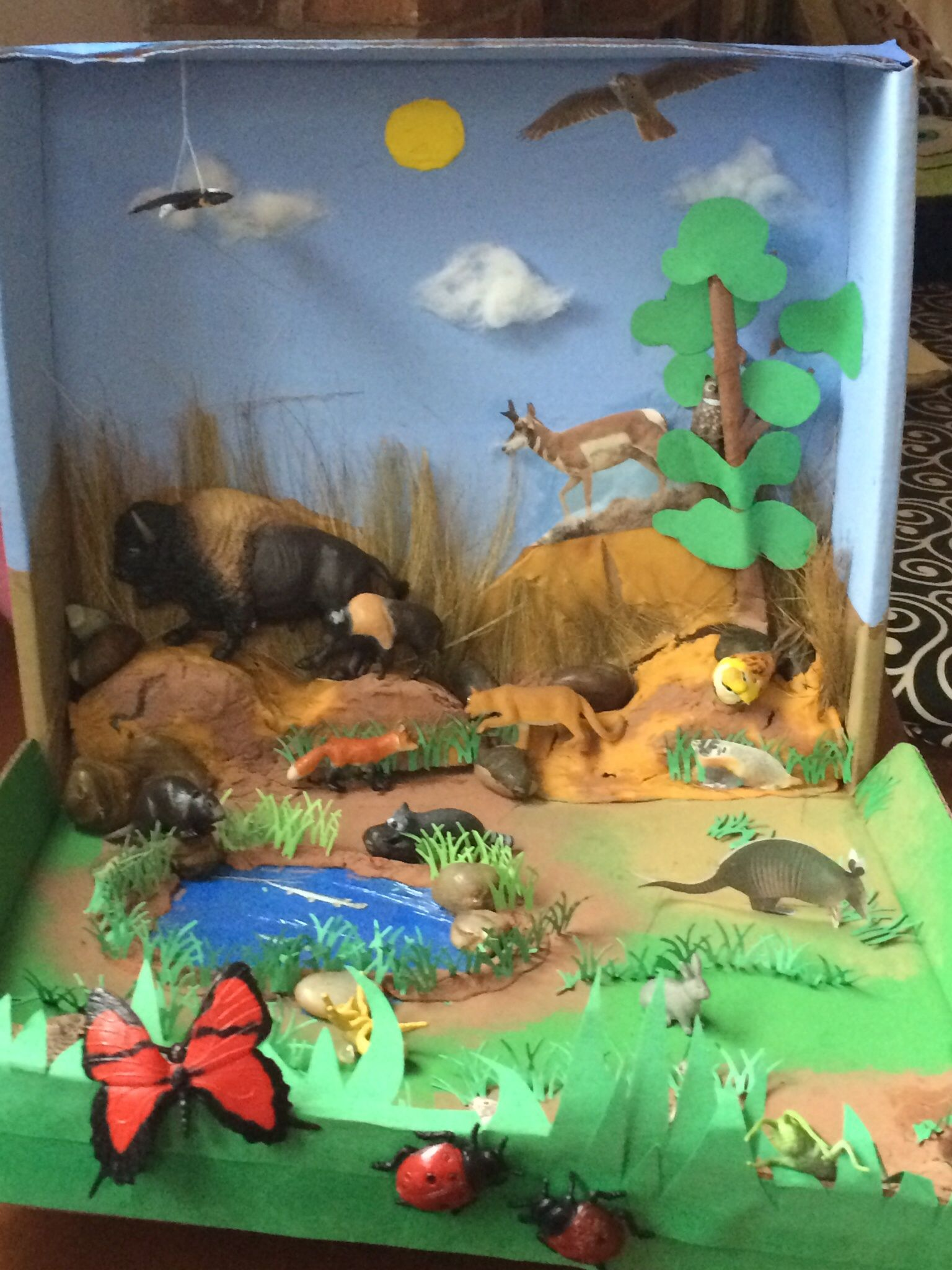 African Elephant Food Chain Diagram Nordyne E1eh Wiring Biome Diorama Grasslands School Biomes