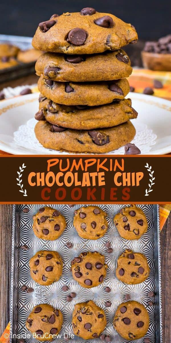 Pumpkin Chocolate Chip Cookies  these soft pumpkin cookies loaded with chocolate are a must make every fall Make this recipe and watch everyone devour the entire batch in...