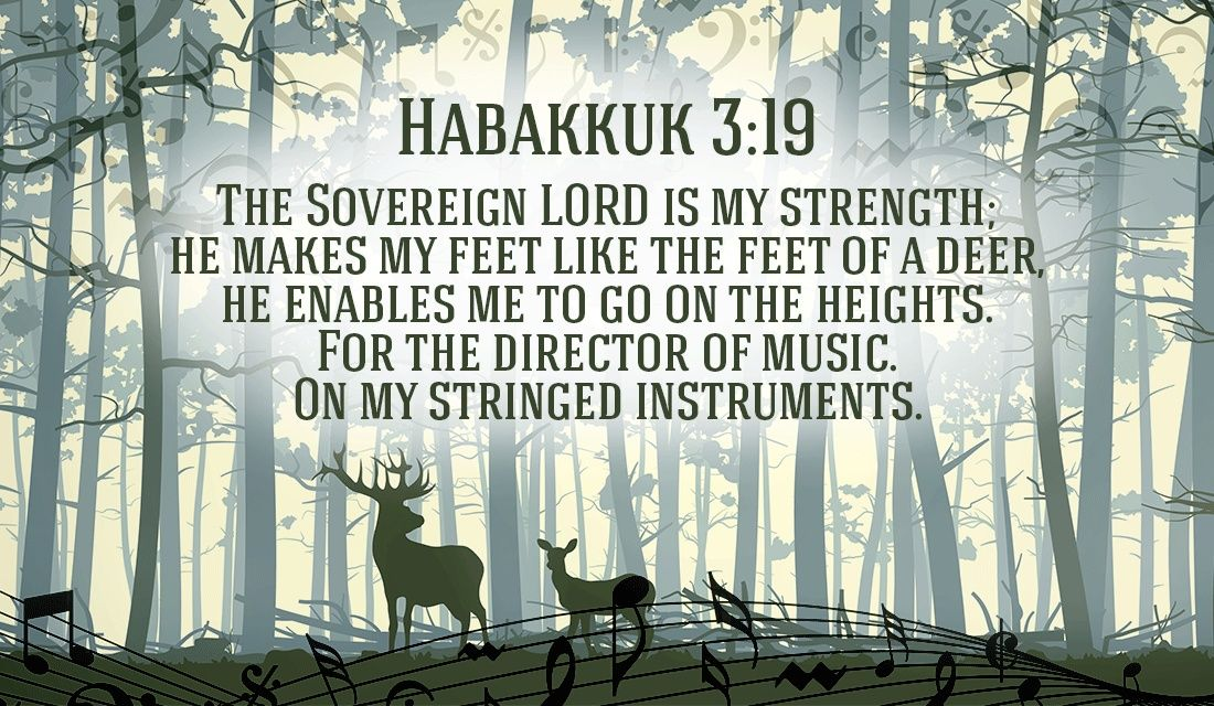 He will put joy in your heart and energy in your feet habakkuk 3 ecards m4hsunfo