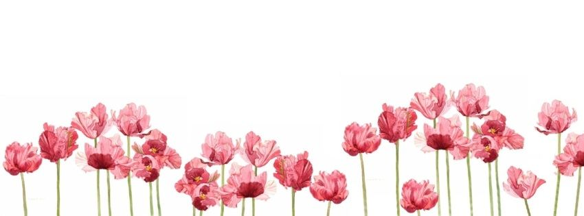 Cover Fb Flower Artsy Pinterest Cover Photos Header And