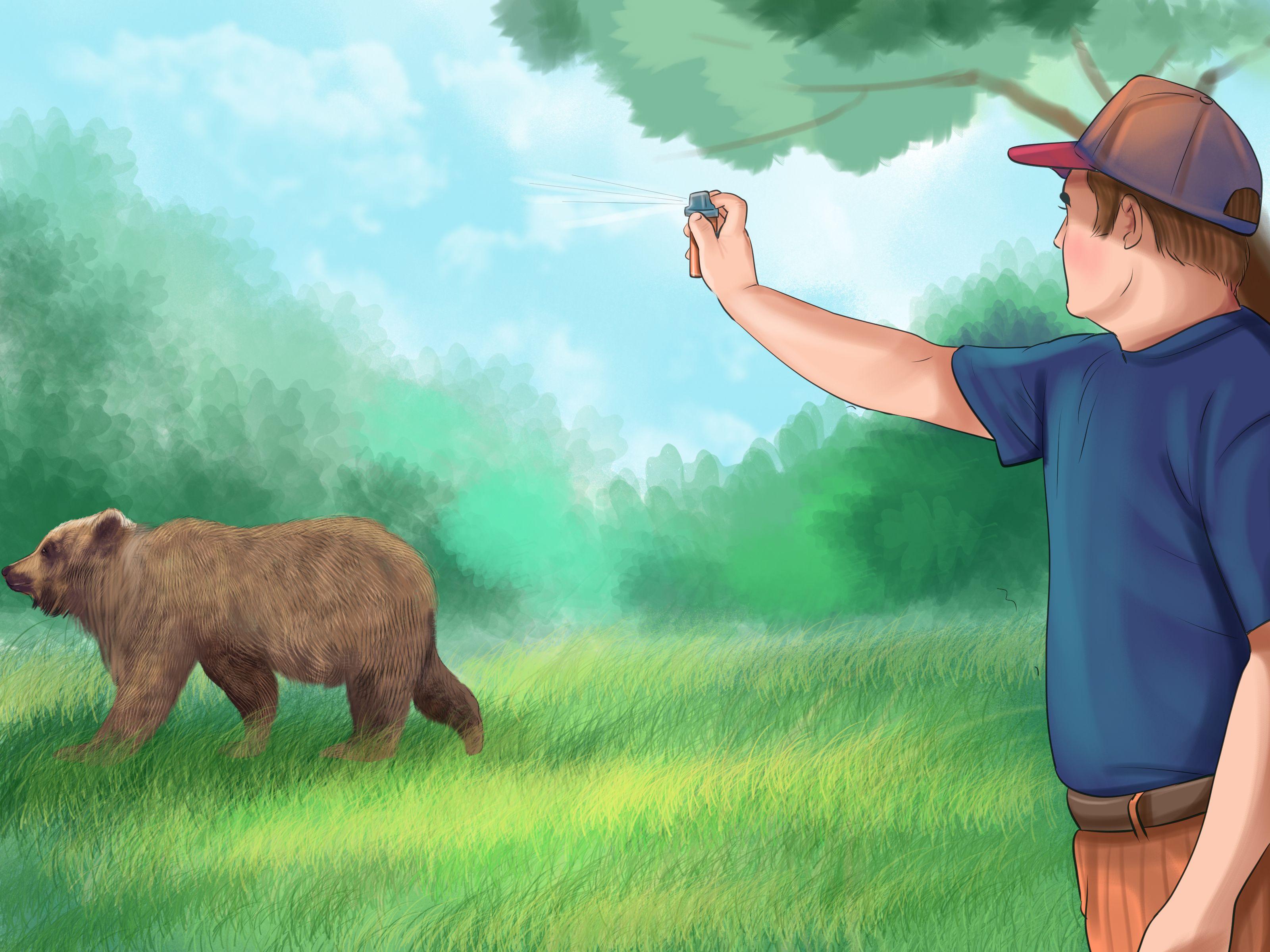 Escape From A Bear Bear Spray Bear Attack Prey Animals
