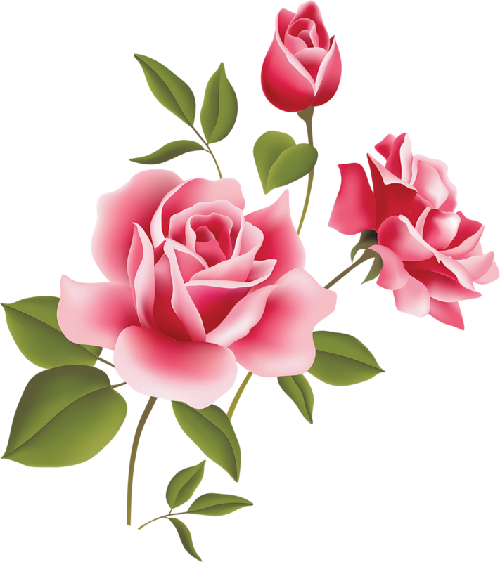 pink rose art picture clipart clipart best clipart best images rh pinterest com pink roses clipart free pink rose bouquet clipart