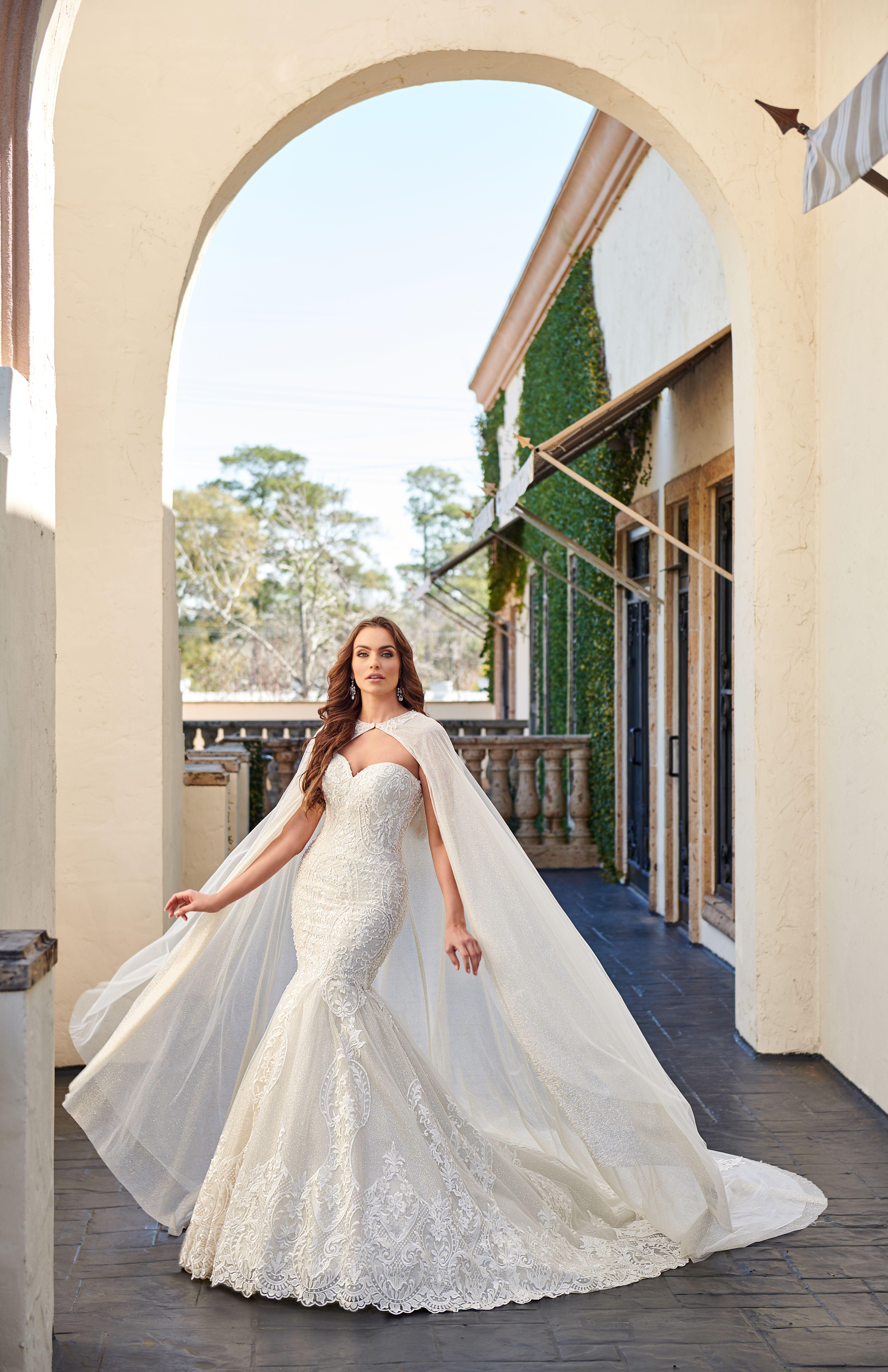 Bridal Gown Wedding Dress Bridal Portraits In 2020 Bridal Dresses Bridal Gowns Bridal