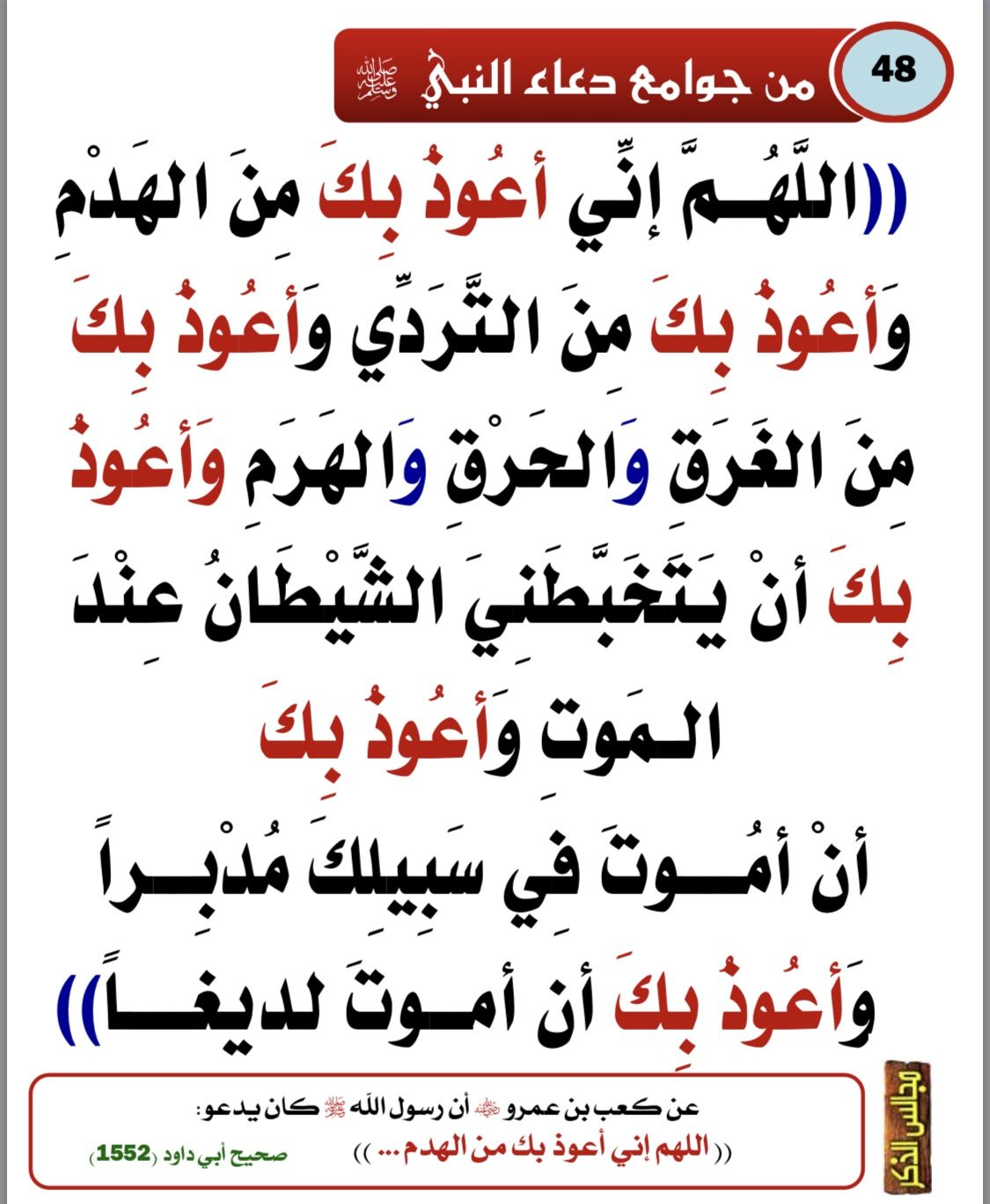 Pin By Ralamry On دعاء Islamic Phrases Islamic Quotes Islam Facts