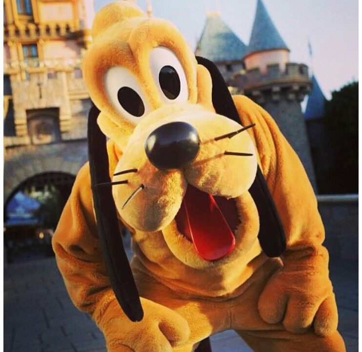 ♥Even a mouse needs a best friend