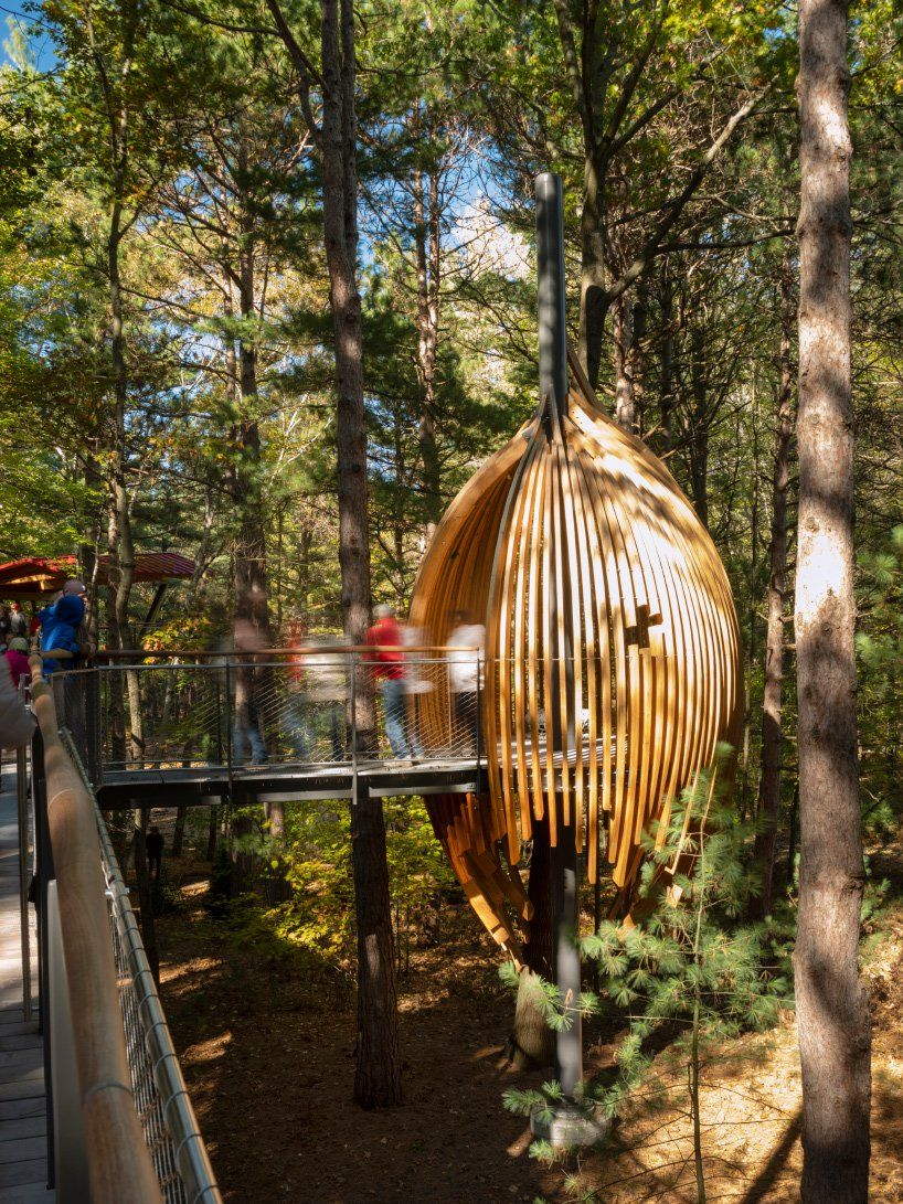 Longest Tree Canopy Walk In The Us Opens At Michigan S Dow Gardens Tree Canopy Canopy Architecture Canopy