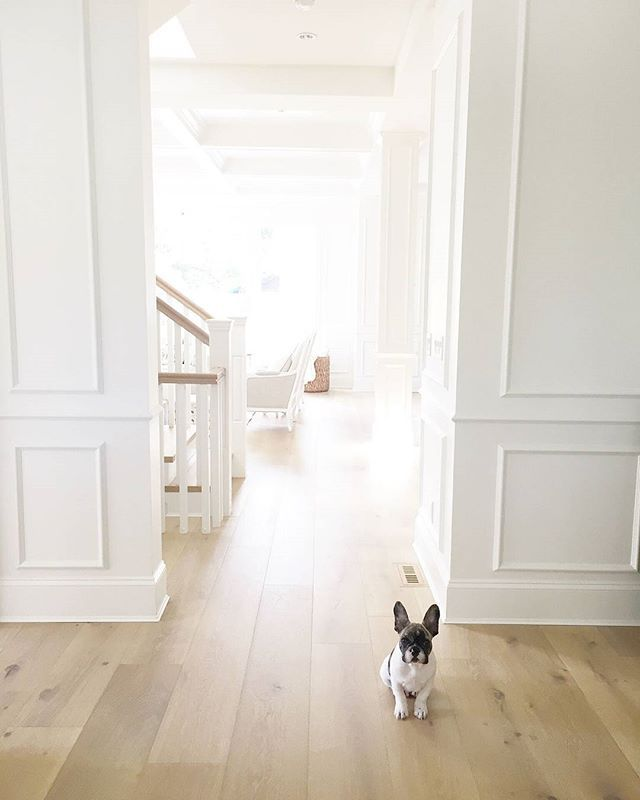 My new #blog #series will feature #Instagramhomes like the #beautifulhome we see here. The talented @jshomedesign shared many #pictures and details about her #home, which includes the #floor used in this space. The cute #puppy? His name is Charlie and he is known for stealing #hearts around #ig. We all love him! :) See more on the blog today!