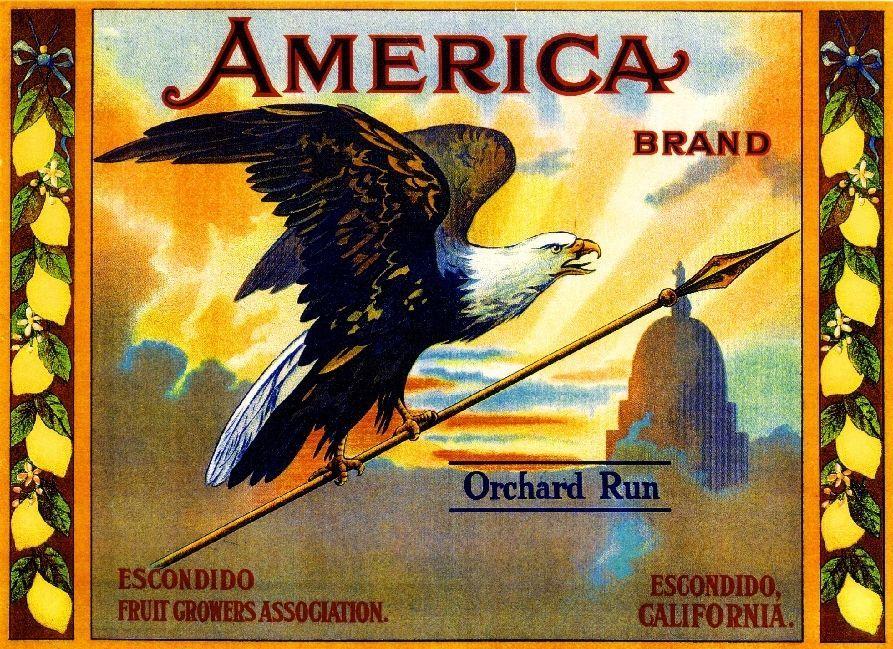 Escondido America Eagle Orchard Run Lemon Citrus Fruit Crate Label Art Print