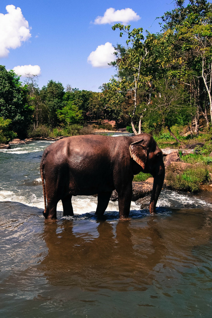 Things to Do in the Bolaven Plateau: Laos Waterfall and