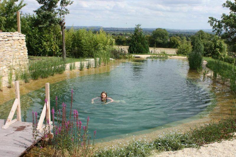 Naturpool 9 Bestrittene Mythen Garten Pooldesign Zenideen Natural Swimming Ponds Natural Swimming Pools Natural Pool