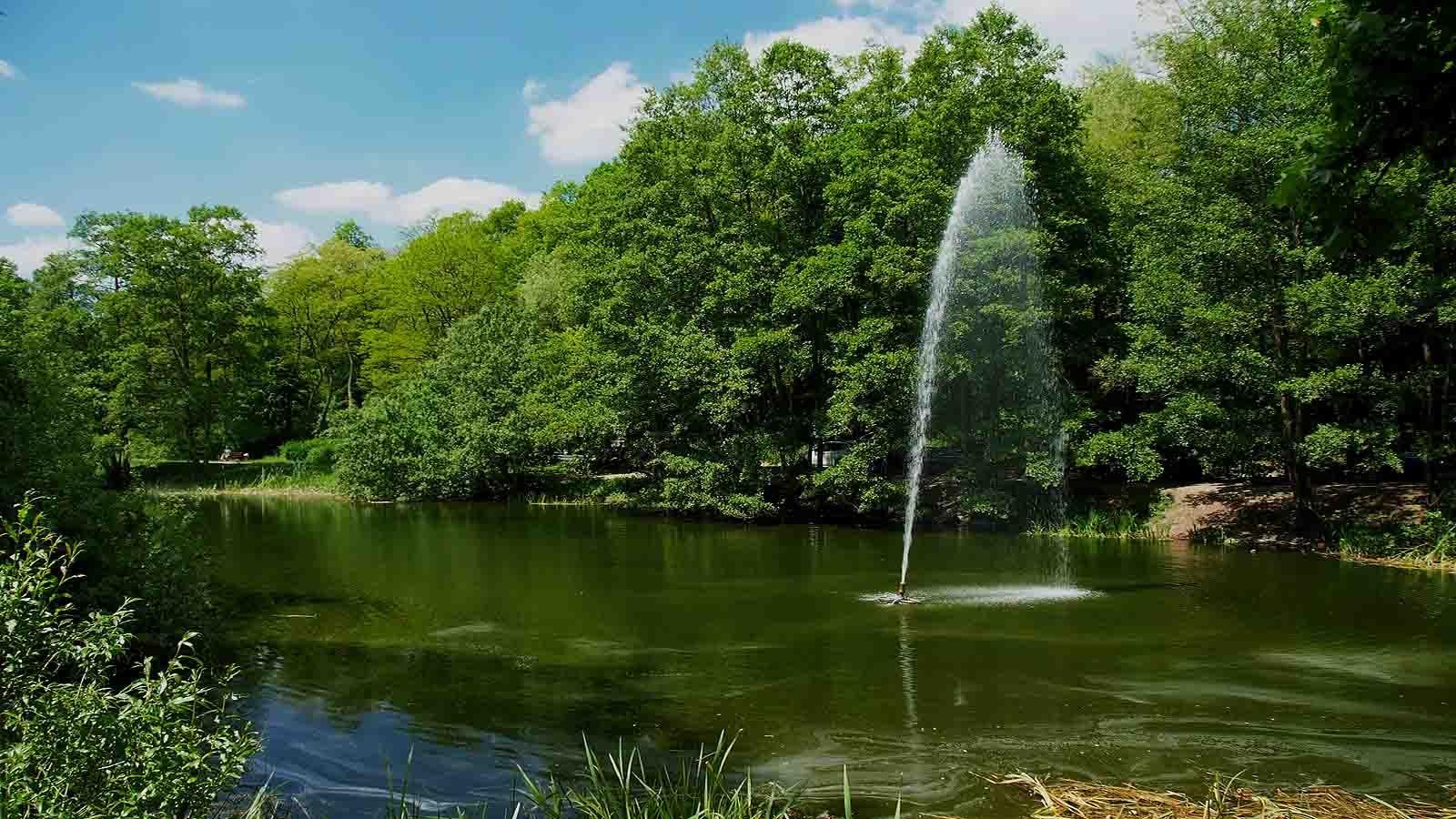 Cute Naherholung mit viel Gr n ist der Deutsch Franz sische Garten in Saarbr cken Wer will kann ja mehrfach um den See spazieren Egal bei welch u