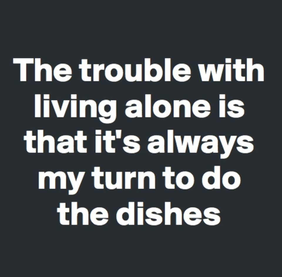 The Trouble With Living Alone Sarcastic Quotes Funny Quotes Fun Quotes Funny