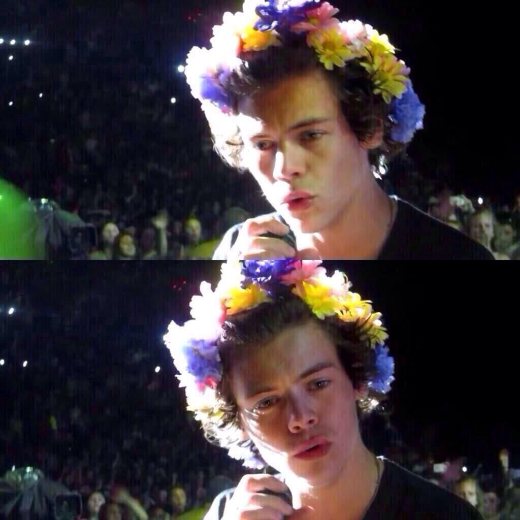Harrystyles with the flower crown pop culture flowers pinterest harrystyles with the flower crown izmirmasajfo