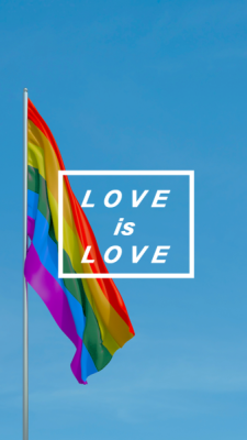 Sexual orientation flags tumblr wallpaper