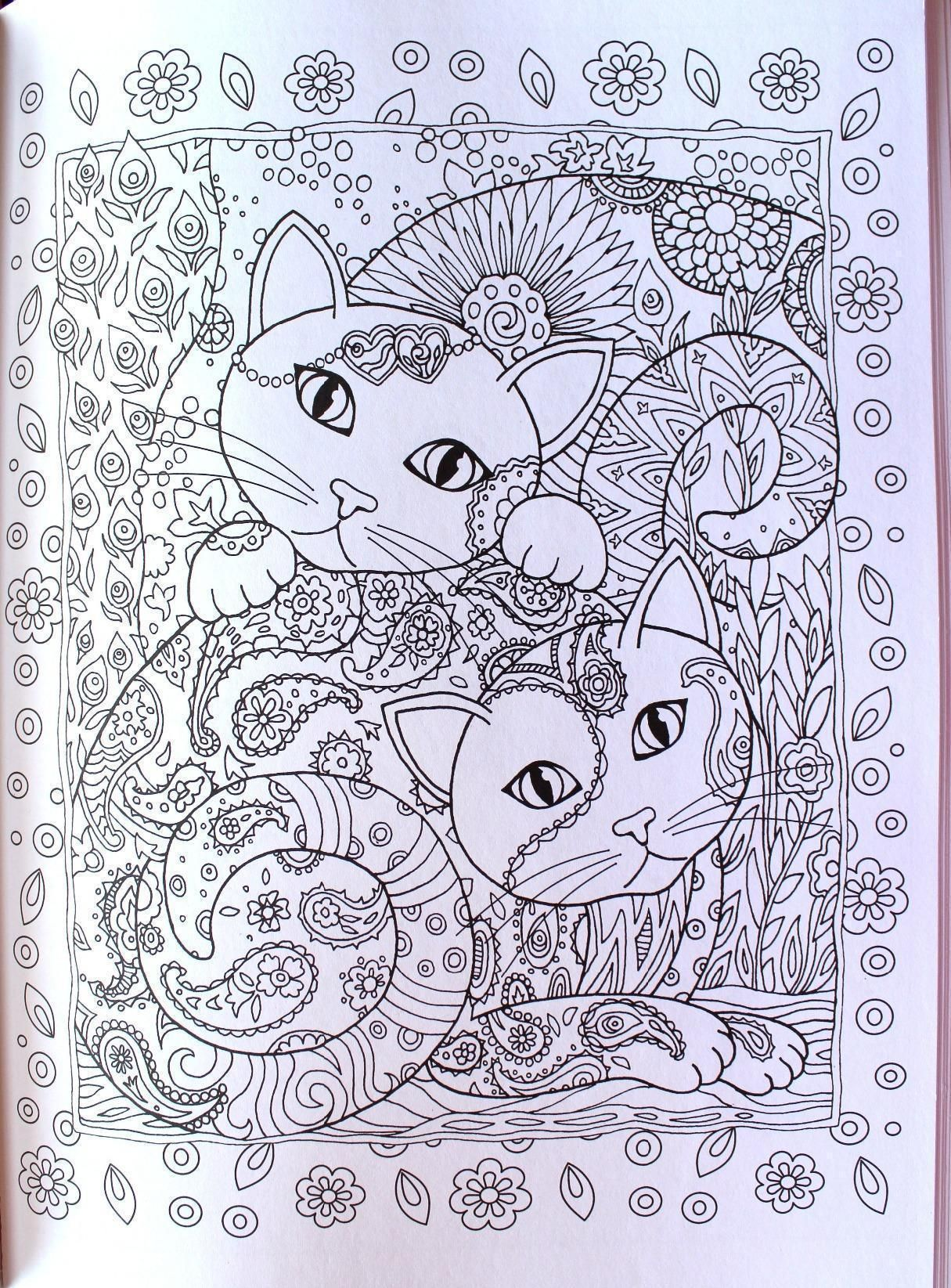 Amazon Jackie Coopers Review Of Creative Haven Cats Coloring Book
