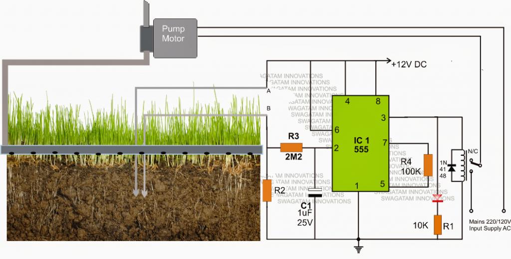 The post explains a simple yet effective automatic plant