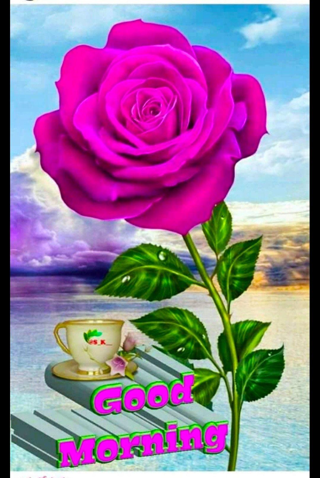 Pin By Govinda Rajulu Chitturi On Good Morning Flower Download Rose Flower Wallpaper Beautiful Rose Flowers