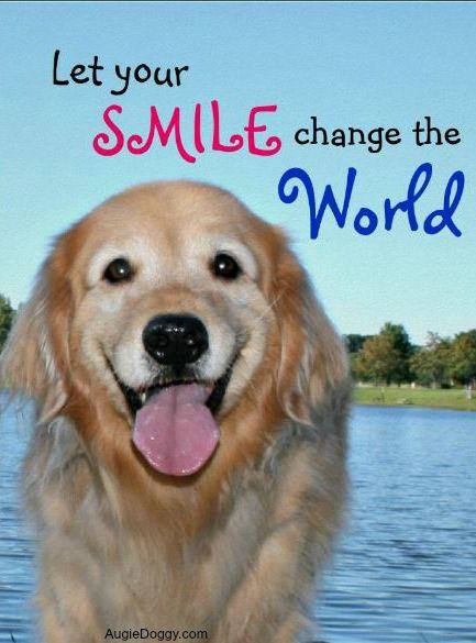 Golden Retriever Change the World Poster