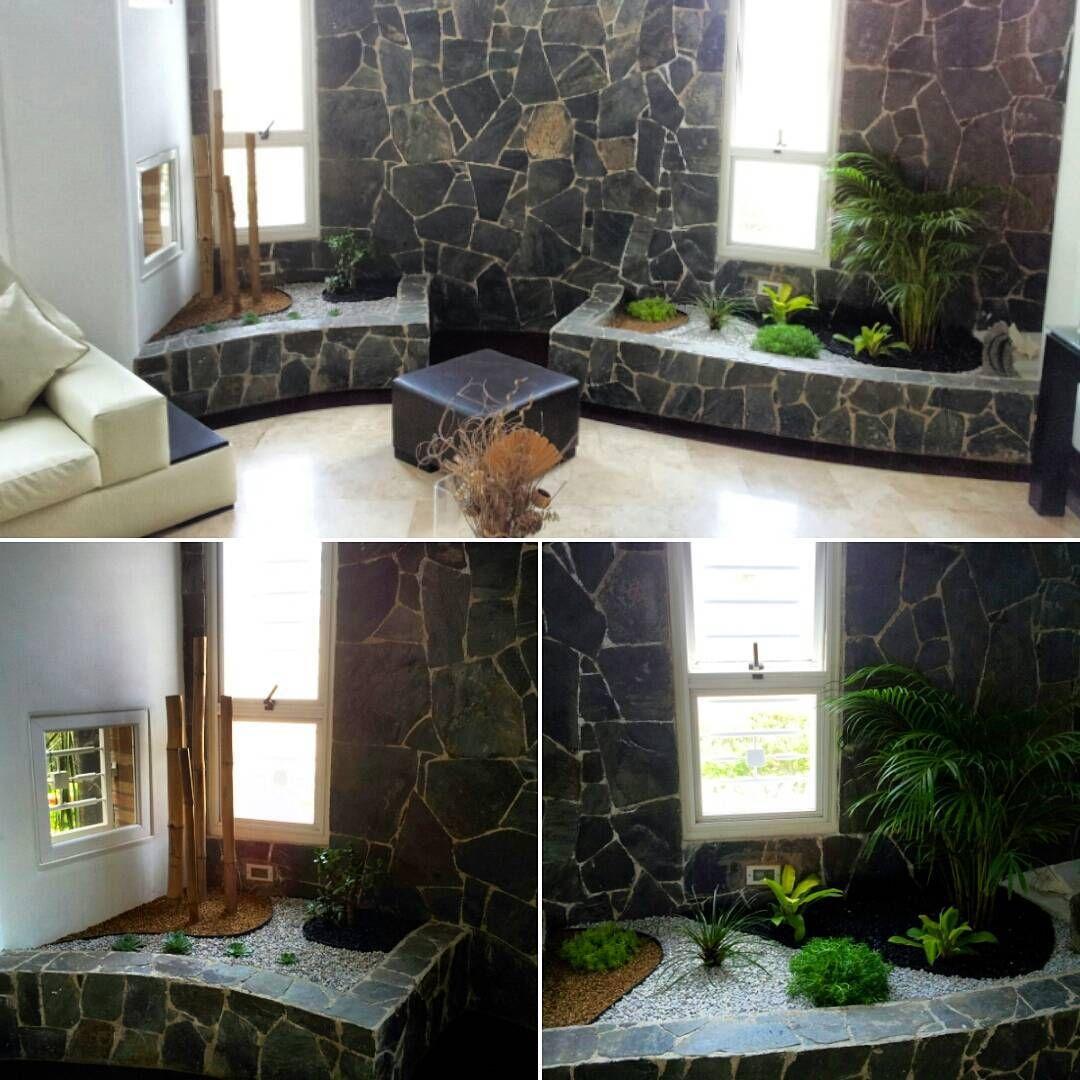 paisajismo interior palmeras