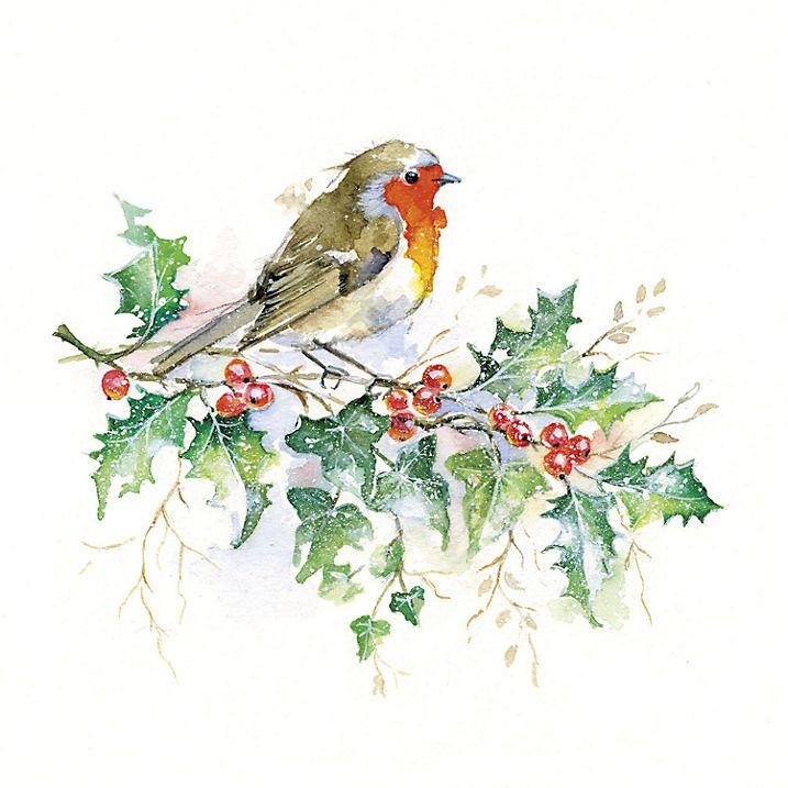 UK Greetings Watercolour Robin Charity Christmas Cards