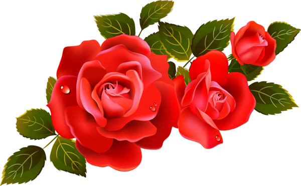 large red roses clipart element flowers pinterest red roses rh pinterest com red rose clipart images red rose clipart png