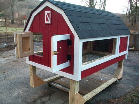 Rabbit Hutch See mom, we can make this and then I can have a…