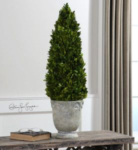 UttermostBoxwood, Cone Topiary