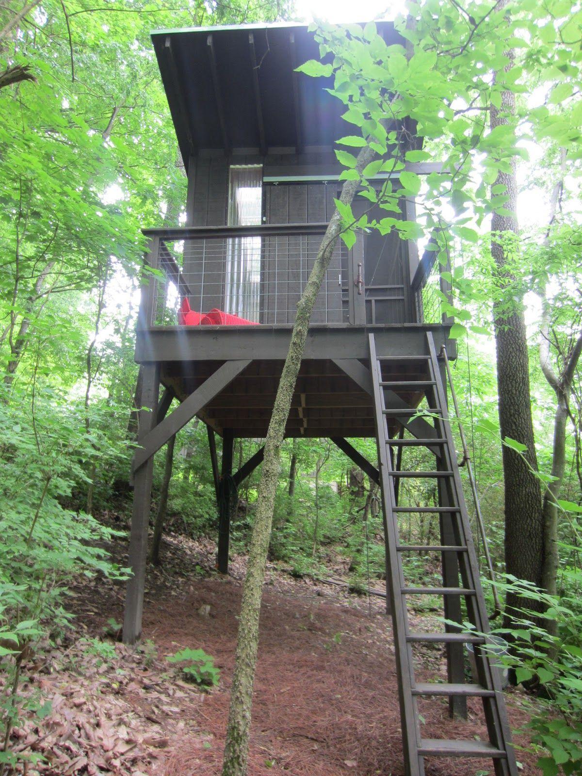 Tiny houses on stilts - A Modern Tree House Tiny Stilt House In Tennessee