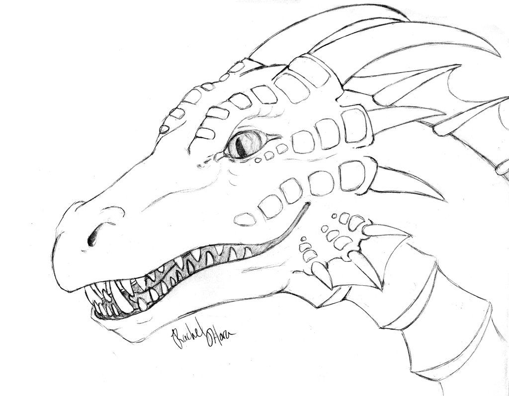 Flying Dragon Template Viewing Gallery Dragon Coloring Page
