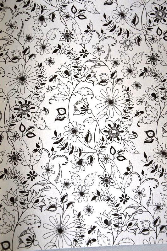 jardin secret le dessin pinterest jardins secrets jardins et coloriage. Black Bedroom Furniture Sets. Home Design Ideas